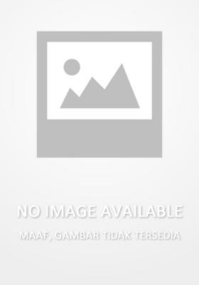 AEG Ares Knight`s Stoner LMG AEG (Marking)